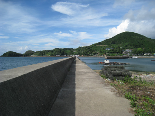 tsunagi